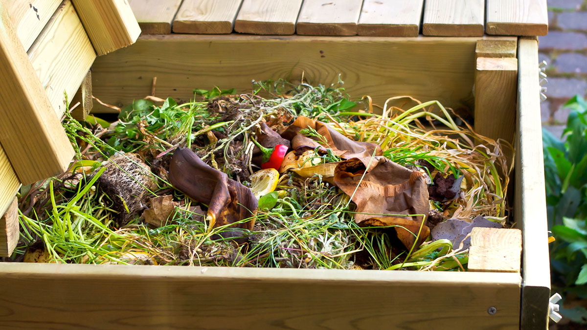 Backyard Composting: How and Why