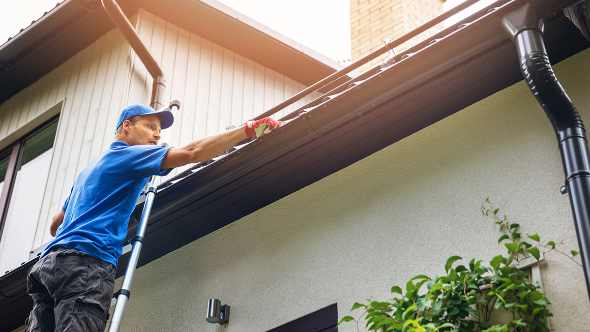 Eaves Cleaning